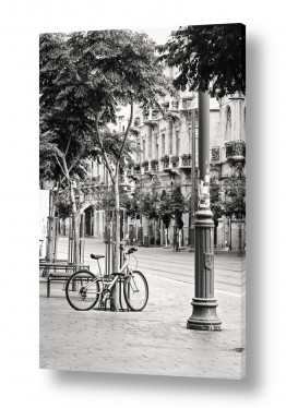 כלי רכב אופניים | רגע של בדידות