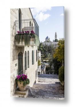 תמונות לפי נושאים קיר | מרפסת בימין משה
