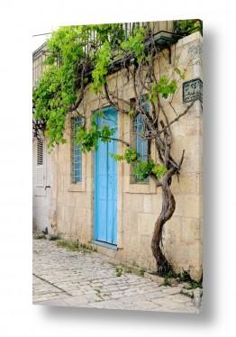 צילומים טבע דומם | דלת טורקיז בימין משה