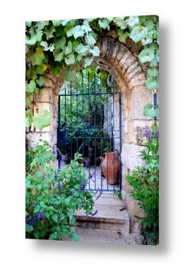 צילומים כפרי | שער כחול