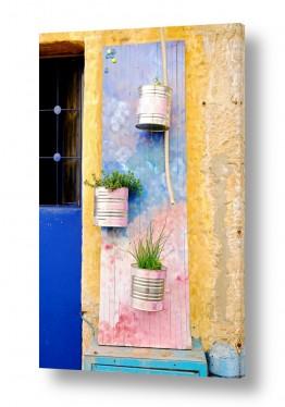 תמונות לפי נושאים נחלאות | שער עם צמחים