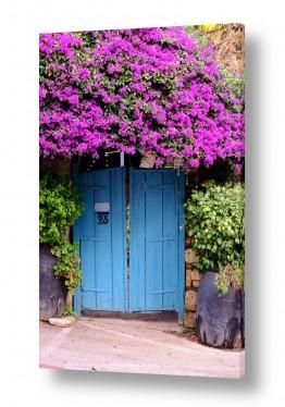 נוף טבע דומם | שער טורקיז עם פרחים