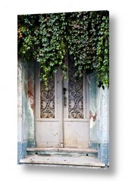 טבע דומם דלתות | כניסה ישנה