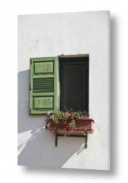 טבע דומם חלונות | חלון ירוק