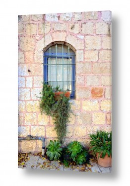 צילומים עירוני | חלון עם צמחים