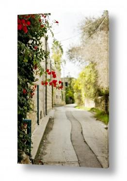 נוף תמונה פנורמית | עין כרם