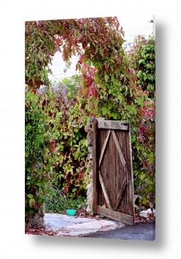 תמונות לפי נושאים עין כרם   כניסה כפרית