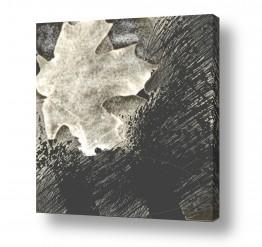 ציורים יונה ראובני | עלה גדול