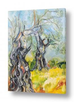 עץ עץ זית | זית בים צהוב
