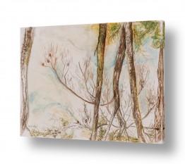 ציורים ציפי אהל   יער