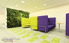 עיצוב משרד הייטק צמחיה